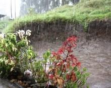 air hujan turun